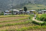 Way to Chimmi lhakhang in Wangdue