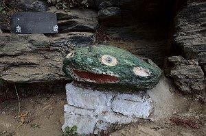 Stone frog in Dzongdrakha