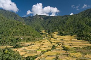 Landscape around Khamsum lhakhang