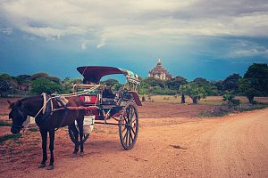 Cart in Pagan