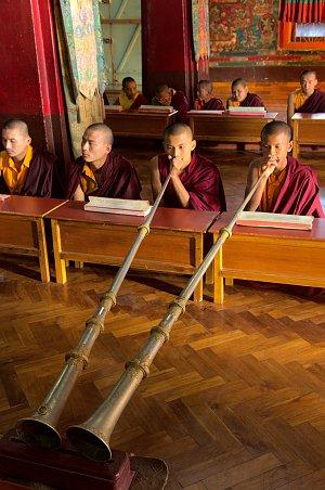 Monks' prayer in Kalimpong
