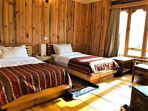 Dhangsa Resort, room