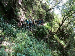 Trail from Dagala to Dagana