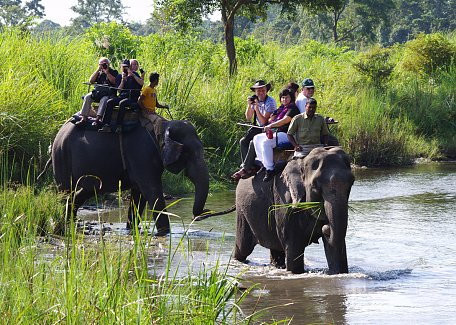 Elephant ride in Jaldapara