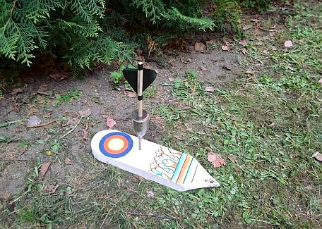 Dart in target