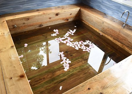 Sorig Wellness bathtub